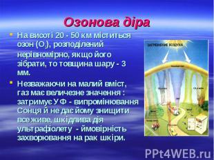 Озонова діра На висоті 20 - 50 км міститься озон (О3), розподілений нерівномірно