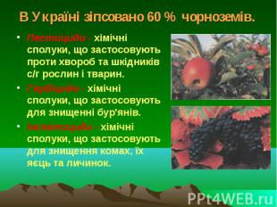 В Україні зіпсовано 60 % чорноземів. Пестициди - хімічні сполуки, що застосовуют