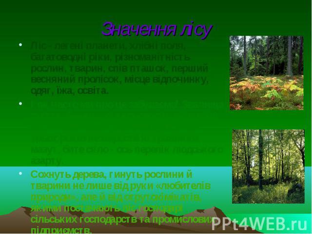 Значення лісу Ліс - легені планети, хлібні поля, багатоводні ріки, різноманітність рослин, тварин, спів пташок, перший весняний пролісок, місце відпочинку, одяг, їжа, освіта. І як часто ми про це забуваємо! Звалища сміття, банки з-під консервів, вип…