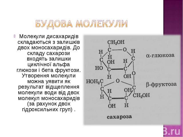 Молекули дисахаридів складаються з залишків двох моносахаридів. До складу сахарози входять залишки циклічної альфа глюкози і бета фруктози. Утворення молекули можна уявити як результат відщеплення молекули води від двох молекул моносахаридів (за рах…