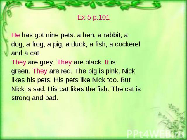 Ex.5 p.101 Ex.5 p.101 He has got nine pets: a hen, a rabbit, a dog, a frog, a pig, a duck, a fish, a cockerel and a cat. They are grey. They are black. It is green. They are red. The pig is pink. Nick likes his pets. His pets like Nick too. But Nick…