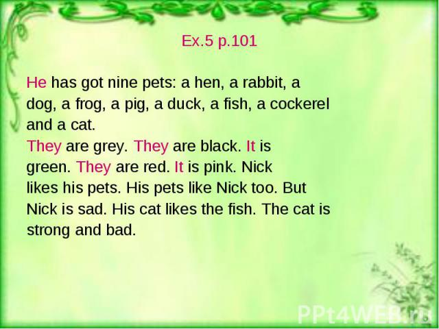 Ex.5 p.101 Ex.5 p.101 He has got nine pets: a hen, a rabbit, a dog, a frog, a pig, a duck, a fish, a cockerel and a cat. They are grey. They are black. It is green. They are red. It is pink. Nick likes his pets. His pets like Nick too. But Nick is s…