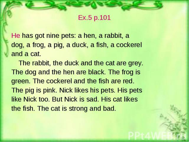 Ex.5 p.101 Ex.5 p.101 He has got nine pets: a hen, a rabbit, a dog, a frog, a pig, a duck, a fish, a cockerel and a cat. The rabbit, the duck and the cat are grey. The dog and the hen are black. The frog is green. The cockerel and the fish are red. …