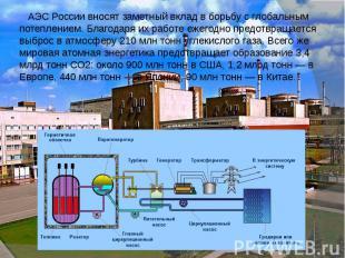 АЭС России вносят заметный вклад в борьбу с глобальным потеплением. Благодаря их