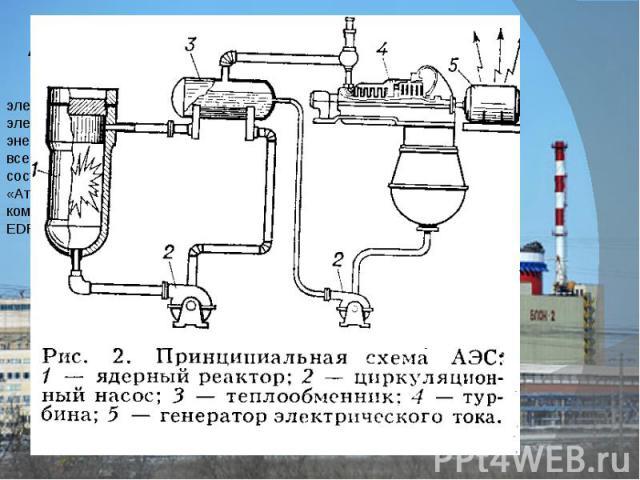 Атомные электростанции На сегодняшний день в нашей стране эксплуатируется 10 атомных электростанций, которые вырабатывают около 16% всего производимого электричества. При этом в Европейской части России доля атомной энергетики достигает 30%, а на Се…