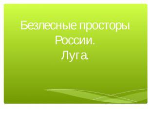 Безлесные просторы России.Луга.