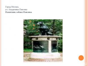 Город Москва,ул. Академика ПавловаПамятник собаке Павлова
