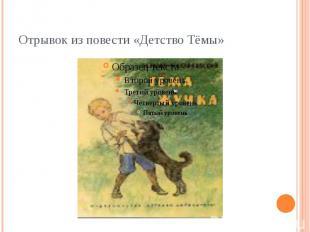 Отрывок из повести «Детство Тёмы»