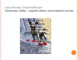 город Москва, Петровский паркПамятник Лайке – первой собаке, полетевшей в космос