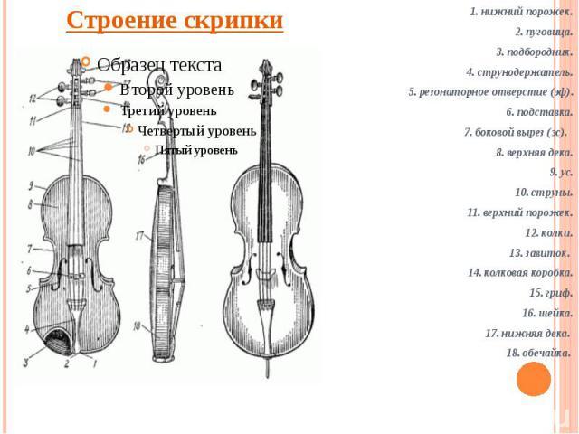 Строение скрипки 1. нижний порожек.2. пуговица.3. подбородник.4. струнодержатель.5. резонаторное отверстие (эф).6. подставка.7. боковой вырез (эс). 8. верхняя дека.9. ус.10. струны.11. верхний порожек.12. колки. 13. завиток. 14. колковая коробка.15.…