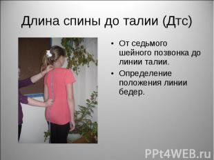 Длина спины до талии (Дтс) От седьмого шейного позвонка до линии талии.Определен
