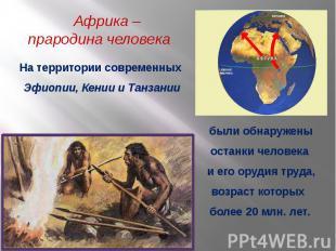 Африка – прародина человека На территории современных Эфиопии, Кении и Танзанииб