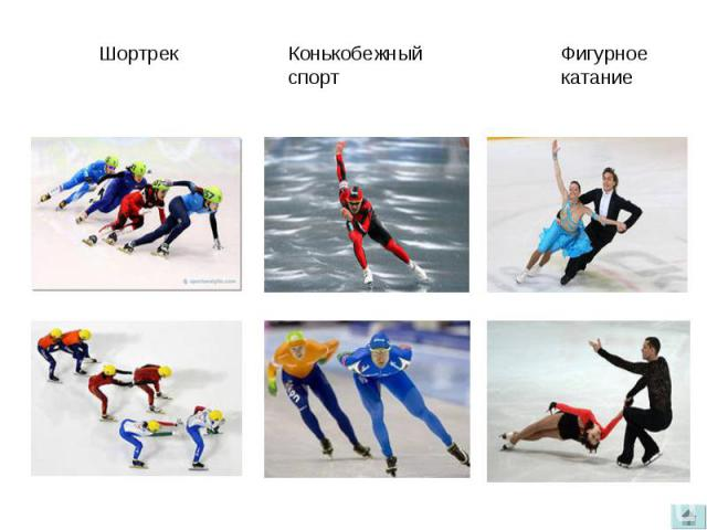 ШортрекКонькобежныйспортФигурное катание