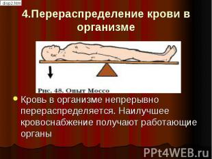4.Перераспределение крови в организме Кровь в организме непрерывно перераспредел