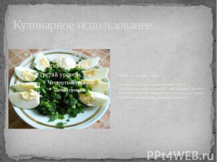 Кулинарное использование Салат из крапивы с яйцомПромытые листья молодой крапивы