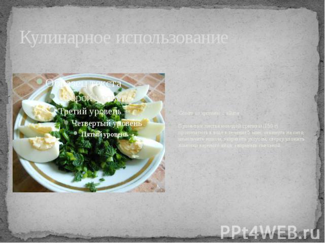 Кулинарное использование Салат из крапивы с яйцомПромытые листья молодой крапивы (150 г) прокипятить в воде в течение 5 мин, откинуть на сито, измельчить ножом, заправить уксусом, сверху уложить ломтики вареного яйца, заправить сметаной.