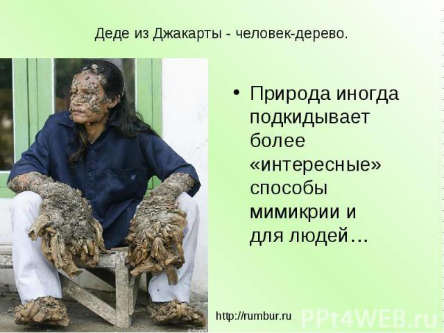Деде из Джакарты - человек-дерево. Природа иногда подкидывает более «интересные» способы мимикрии и длялюдей… http://rumbur.ru