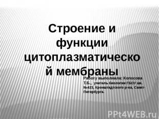 Строение и функции цитоплазматической мембраны Работу выполнила: Копосова Т.Б.,