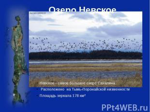 Озеро Невское Невское - самое большое озероСахалина Расположено наТымь-Поронай