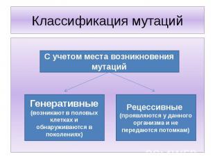 Классификация мутаций С учетом места возникновения мутацийГенеративные (возникаю