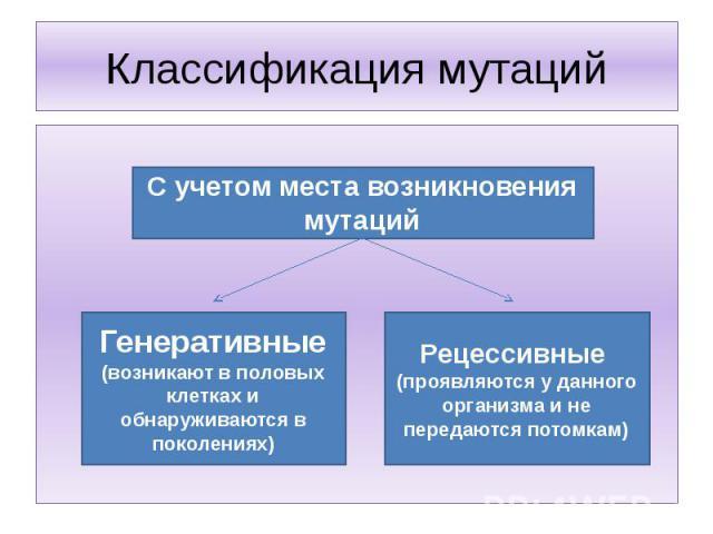 Классификация мутаций С учетом места возникновения мутацийГенеративные (возникают в половых клетках и обнаруживаются в поколениях)Рецессивные (проявляются у данного организма и не передаются потомкам)