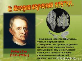 2. История изучения клетки. английский естествоиспытатель, учёный-энциклопедист.