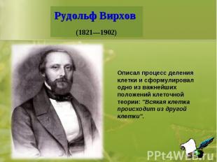 Рудольф Вирхов (1821—1902) Описал процесс деления клетки и сформулировал одно из