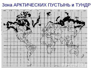 Зона АРКТИЧЕСКИХ ПУСТЫНЬ и ТУНДР