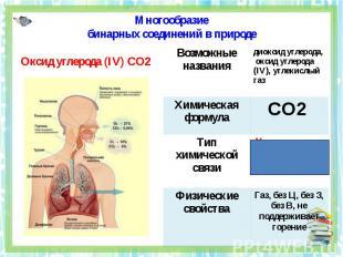 Многообразиебинарных соединений в природе Оксид углерода (IV) CO2