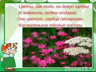Цветы, как люди, на добро щедрыИ нежность людям отдавая, Они цветут, сердца отог
