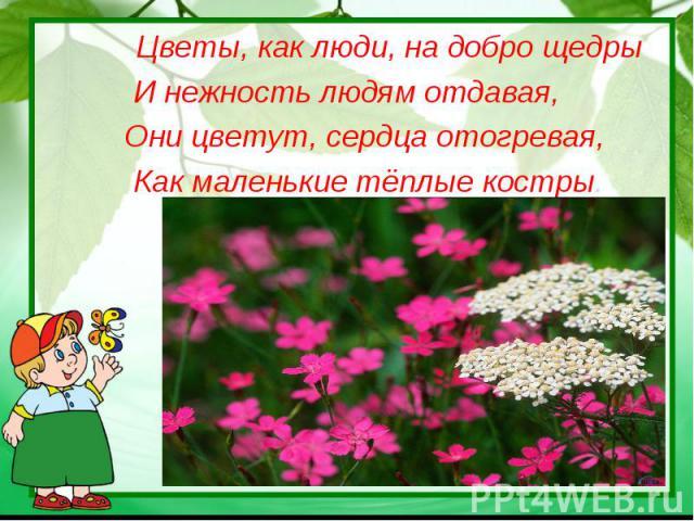 Цветы, как люди, на добро щедрыИ нежность людям отдавая, Они цветут, сердца отогревая, Как маленькие тёплые костры.