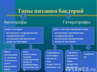 Типы питания бактерий Автотрофы Гетеротрофы