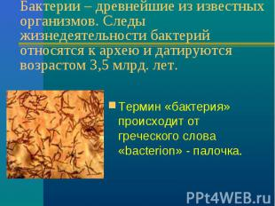Бактерии – древнейшие из известных организмов. Следы жизнедеятельности бактерий