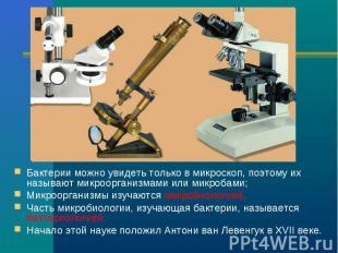 Бактерии можно увидеть только в микроскоп, поэтому их называют микроорганизмами