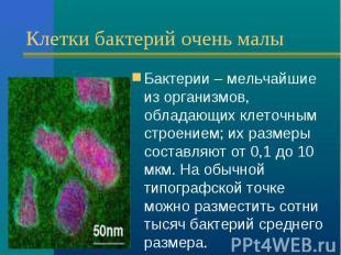 Клетки бактерий очень малы Бактерии – мельчайшие из организмов, обладающих клето
