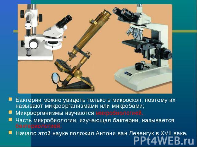Бактерии можно увидеть только в микроскоп, поэтому их называют микроорганизмами или микробами; Микроорганизмы изучаются микробиологией. Часть микробиологии, изучающая бактерии, называется бактериологией. Начало этой науке положил Антони ван Левенгук…