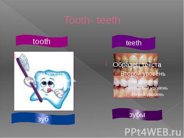 Tooth- teeth