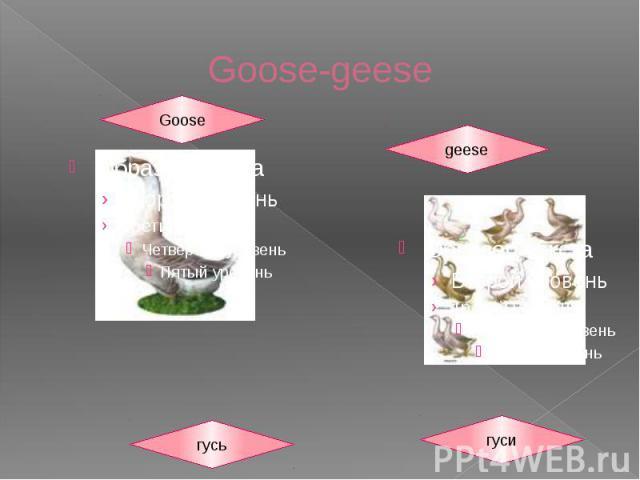 Goose-geese