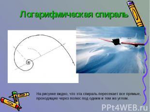 Логарифмическая спираль На рисунке видно, что эта спираль пересекает все прямые,