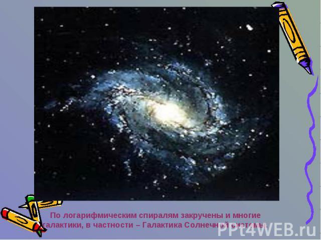 По логарифмическим спиралям закручены и многие галактики, в частности – Галактика Солнечной системы.