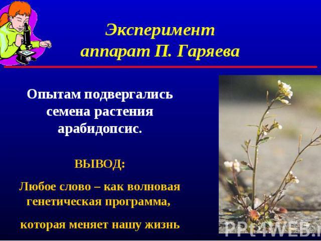 Экспериментаппарат П. ГаряеваОпытам подвергались семена растения арабидопсис.ВЫВОД:Любое слово – как волновая генетическая программа, которая меняет нашу жизнь