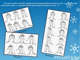 На иллюстрациях показаны одновременный одношажный коньковый ход (рис. 1), попере