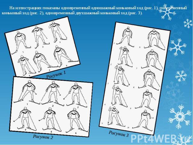 На иллюстрациях показаны одновременный одношажный коньковый ход (рис. 1), попеременный коньковый ход (рис. 2), одновременный двухшажный коньковый ход (рис. 3).