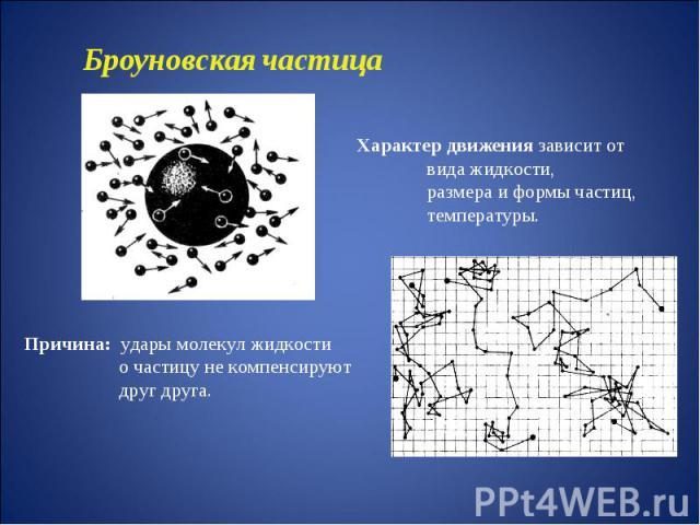 Броуновская частицаХарактер движения зависит от вида жидкости, размера и формы частиц, температуры.Причина: удары молекул жидкости о частицу не компенсируют друг друга.