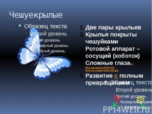 Чешуекрылые Две пары крыльевКрылья покрыты чешуйкамиРотовой аппарат – сосущий (х
