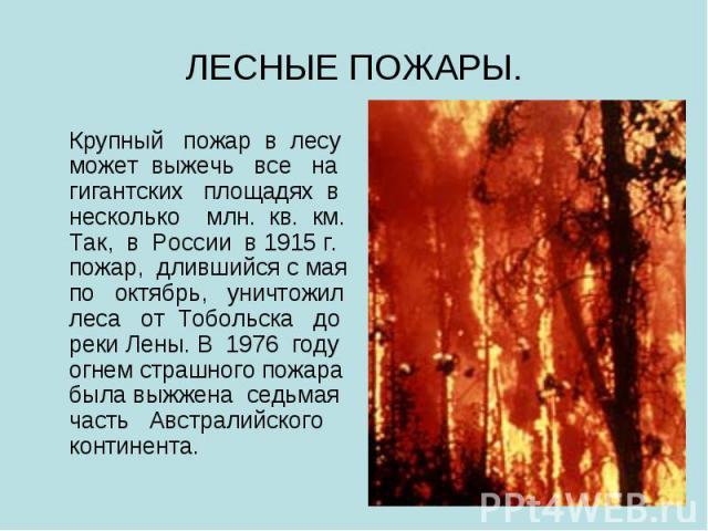 ЛЕСНЫЕ ПОЖАРЫ. Крупный пожар в лесу может выжечь все на гигантских площадях в несколько млн. кв. км. Так, в России в 1915 г. пожар, длившийся с мая по октябрь, уничтожил леса от Тобольска до реки Лены. В 1976 году огнем страшного пожара была выжжена…
