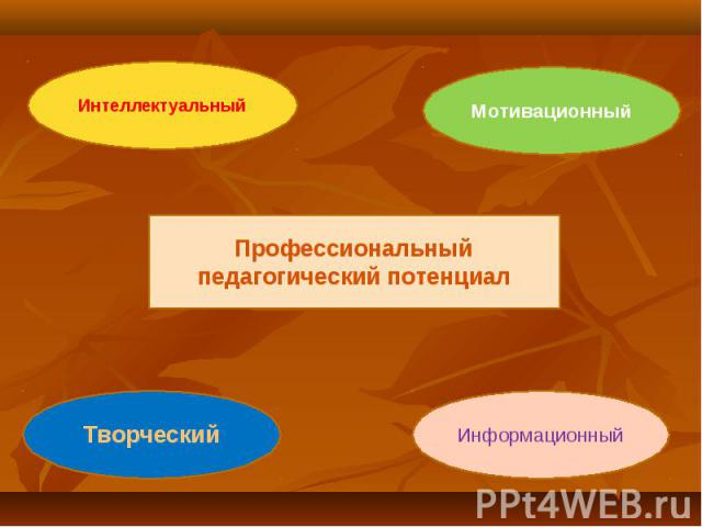 Профессиональный педагогический потенциалИнтеллектуальныйМотивационныйТворческийИнформационный