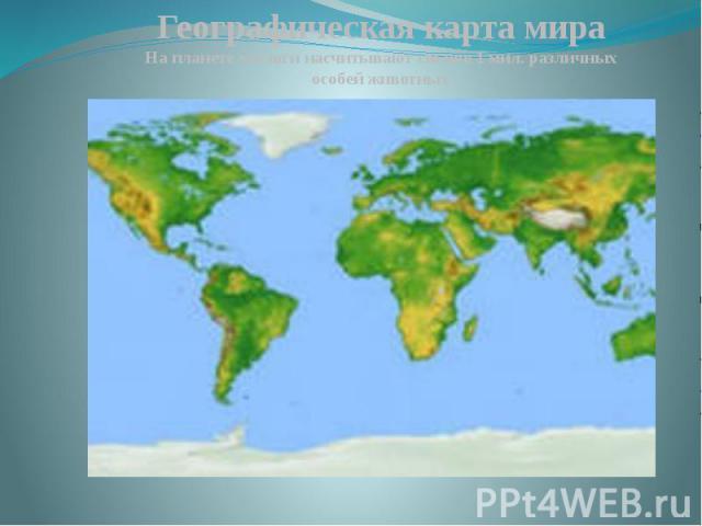 Географическая карта мираНа планете зоологи насчитывают свыше 1 мил. различных особей животных
