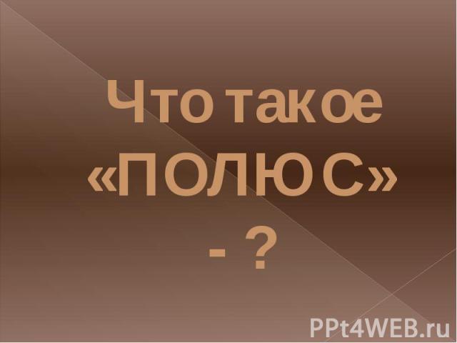Что такое «ПОЛЮС» - ?