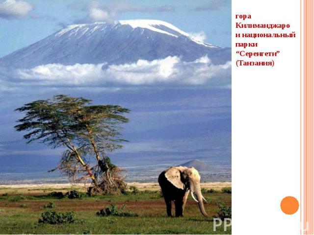 """гора Килиманджаро и национальный парки """"Серенгети"""" (Танзания)"""